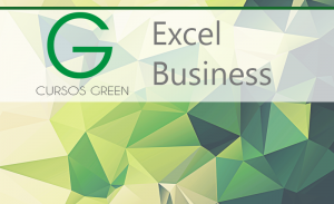 excel business